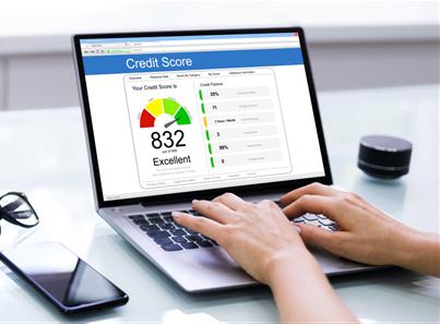 Free Company Credit Check