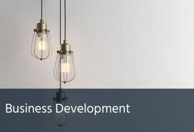 Business Development for a Lighting Company - Case Study - Merranti Consulting